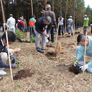 天使の森で植樹を支援